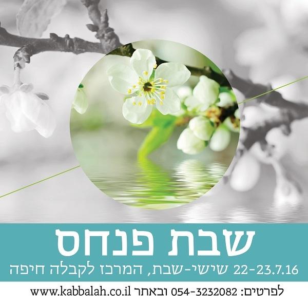 pinchas-haifa-600