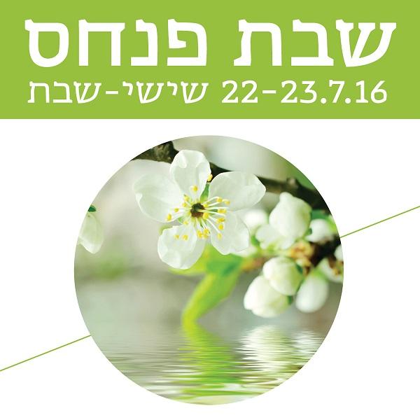 שבת פנחס במרכז לקבלה תל אביב