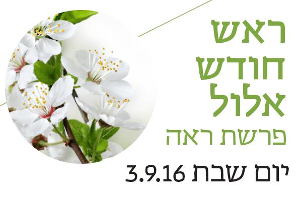 ראש חודש אלול  פרשת ראה יום שבת 3.9.16